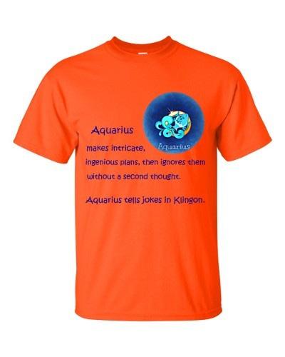 Aquarius T-Shirt (orange)
