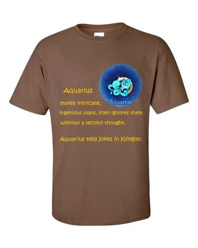 Aquarius T-Shirt (chestnut)