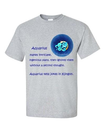 Aquarius T-Shirt (slate)