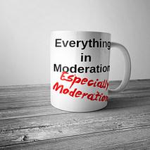 Everything in Moderation Mug