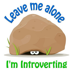Leave Me Alone. I'm Introverting.
