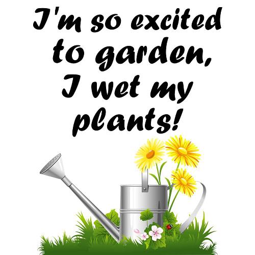 I Wet my Plants